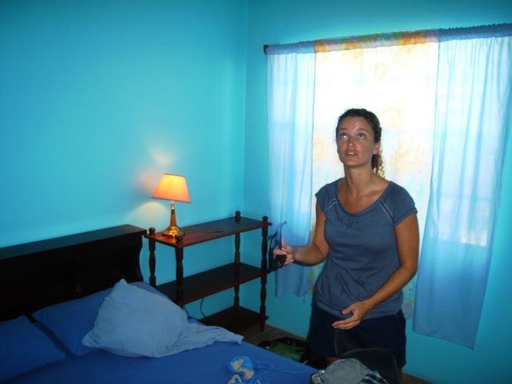 Van blog blue room